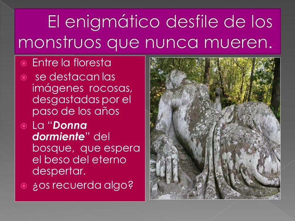 Entre la floresta se destacan las imágenes rocosas, desgastadas por el paso de los años La Donna dormiente del bosque, que espera el beso del eterno d