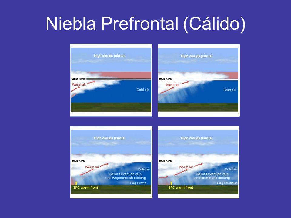 Niebla Prefrontal (Cálido)