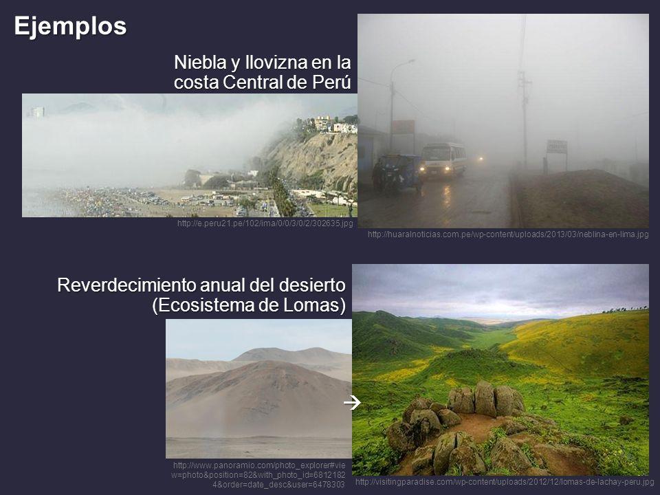 http://visitingparadise.com/wp-content/uploads/2012/12/lomas-de-lachay-peru.jpg Niebla y llovizna en la costa Central de Perú Reverdecimiento anual de