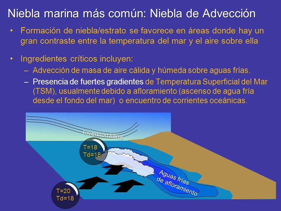 Niebla marina más común: Niebla de Advección Formación de niebla/estrato se favorece en áreas donde hay un gran contraste entre la temperatura del mar
