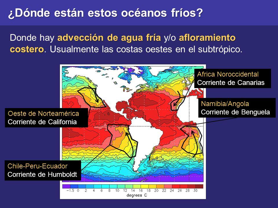 ¿Dónde están estos océanos fríos? Chile-Peru-Ecuador Corriente de Humboldt Oeste de Norteamérica Corriente de California Africa Noroccidental Corrient