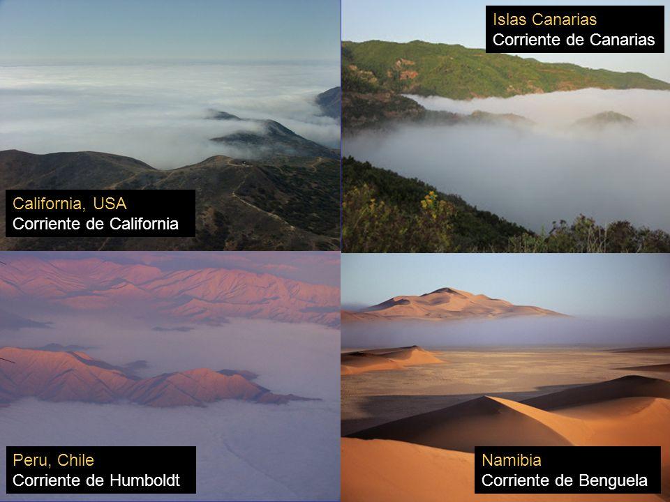 Peru, Chile Corriente de Humboldt Namibia Corriente de Benguela California, USA Corriente de California Islas Canarias Corriente de Canarias