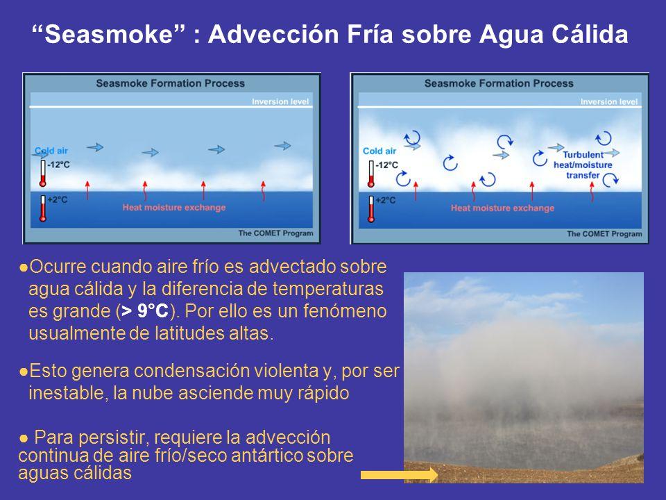 Seasmoke : Advección Fría sobre Agua Cálida Ocurre cuando aire frío es advectado sobre agua cálida y la diferencia de temperaturas es grande (> 9°C).