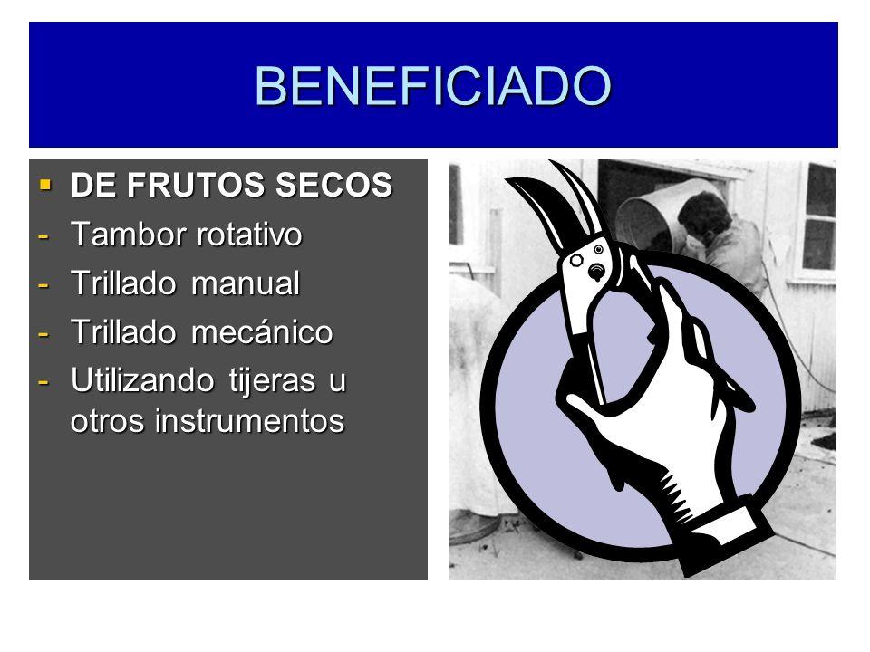 BENEFICIADO DE FRUTOS SECOS DE FRUTOS SECOS -Tambor rotativo -Trillado manual -Trillado mecánico -Utilizando tijeras u otros instrumentos