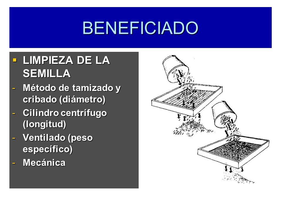 BENEFICIADO LIMPIEZA DE LA SEMILLA LIMPIEZA DE LA SEMILLA -Método de tamizado y cribado (diámetro) -Cilindro centrífugo (longitud) -Ventilado (peso es