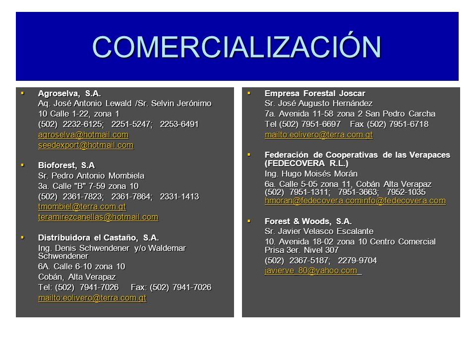 COMERCIALIZACIÓN Agroselva, S.A. Agroselva, S.A. Aq. José Antonio Lewald /Sr. Selvin Jerónimo 10 Calle 1-22, zona 1 (502) 2232-6125; 2251-5247; 2253-6