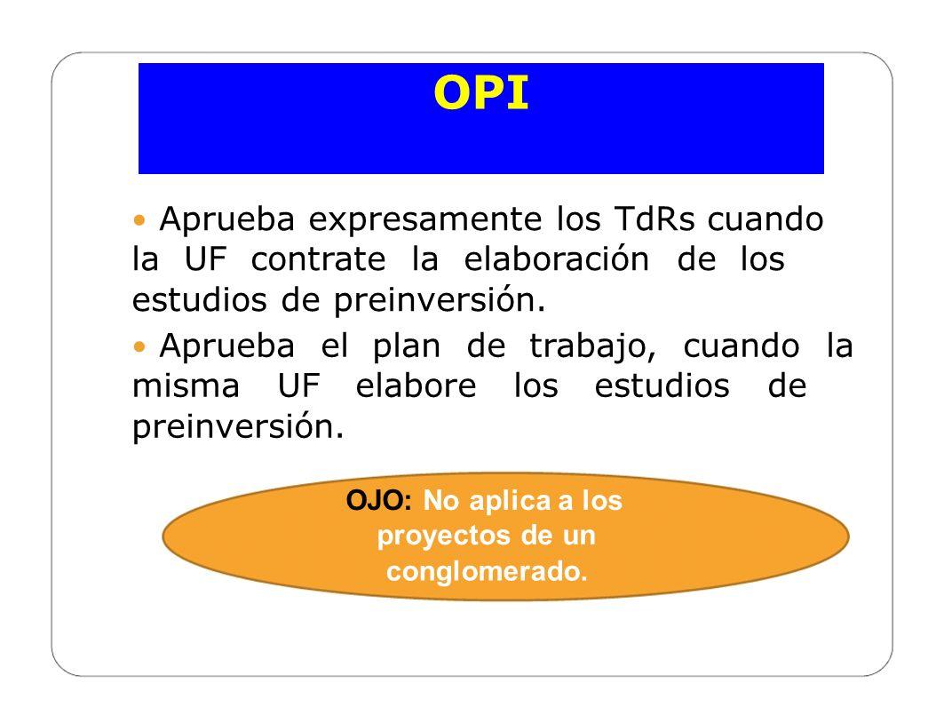 CELAP OPI Promueve la capacitación permanente del personal técnico de las UF y UE de su Sector, Gobierno Regional o Gobierno Local, según corresponda.