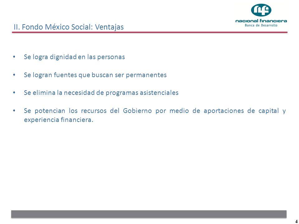 4 II. Fondo México Social: Ventajas Se logra dignidad en las personas Se logran fuentes que buscan ser permanentes Se elimina la necesidad de programa