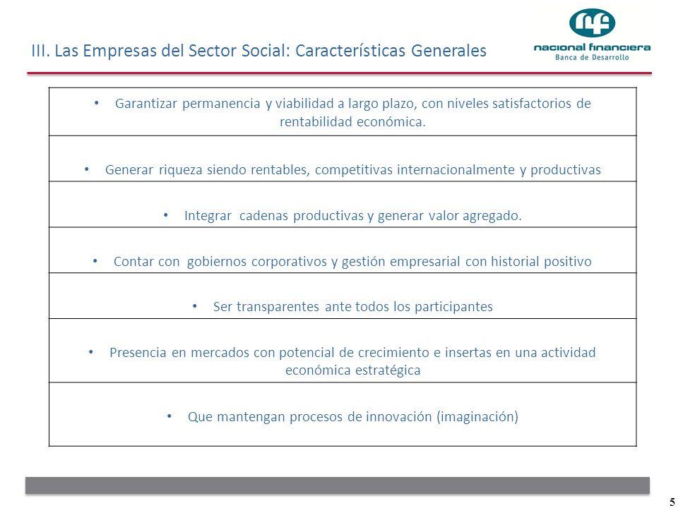 5 III. Las Empresas del Sector Social: Características Generales Garantizar permanencia y viabilidad a largo plazo, con niveles satisfactorios de rent