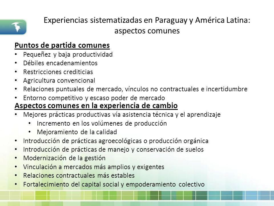 Experiencias sistematizadas en Paraguay y América Latina: aspectos comunes Puntos de partida comunes Pequeñez y baja productividad Débiles encadenamie