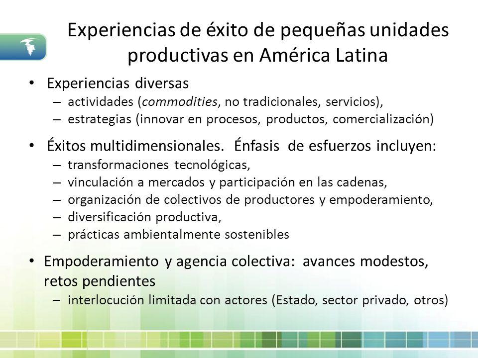 Experiencias de éxito de pequeñas unidades productivas en América Latina Experiencias diversas – actividades (commodities, no tradicionales, servicios