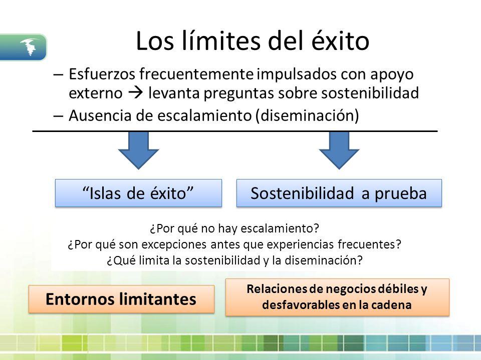 Los límites del éxito – Esfuerzos frecuentemente impulsados con apoyo externo levanta preguntas sobre sostenibilidad – Ausencia de escalamiento (disem