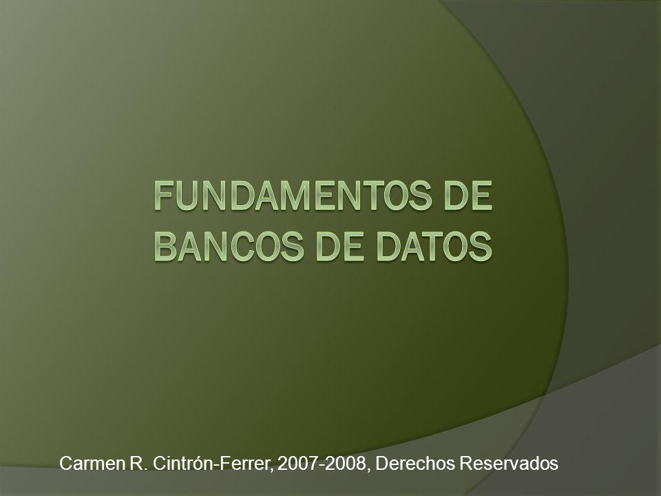 Carmen R. Cintrón-Ferrer, 2007-2008, Derechos Reservados