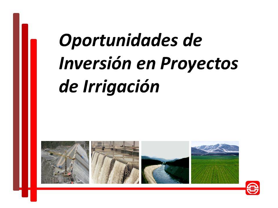 Oportunidades de Inversión en Proyectos de Irrigación