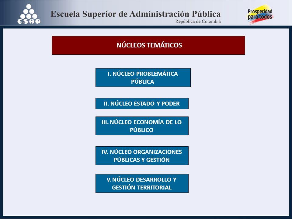 NÚCLEOS TEMÁTICOS I.NÚCLEO PROBLEMÁTICA PÚBLICA II.