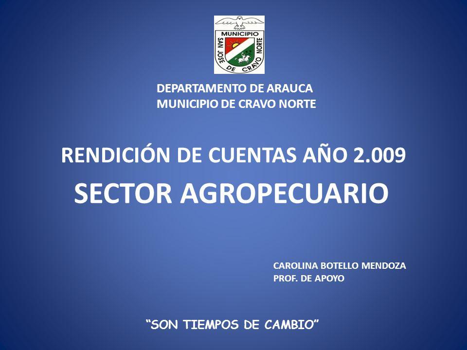 RENDICIÓN DE CUENTAS AÑO 2.009 SECTOR AGROPECUARIO SON TIEMPOS DE CAMBIO CAROLINA BOTELLO MENDOZA PROF. DE APOYO DEPARTAMENTO DE ARAUCA MUNICIPIO DE C
