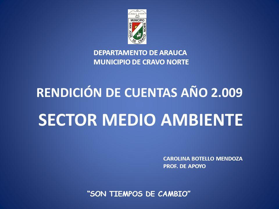 RENDICIÓN DE CUENTAS AÑO 2.009 SON TIEMPOS DE CAMBIO CAROLINA BOTELLO MENDOZA PROF.