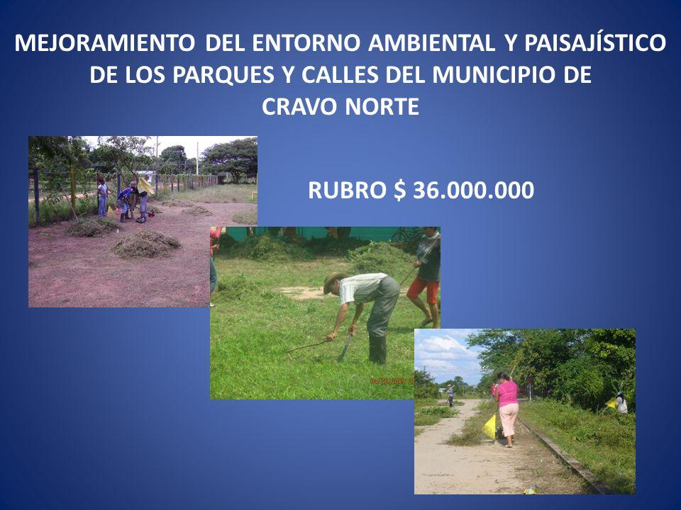 MEJORAMIENTO DEL ENTORNO AMBIENTAL Y PAISAJÍSTICO DE LOS PARQUES Y CALLES DEL MUNICIPIO DE CRAVO NORTE RUBRO $ 36.000.000