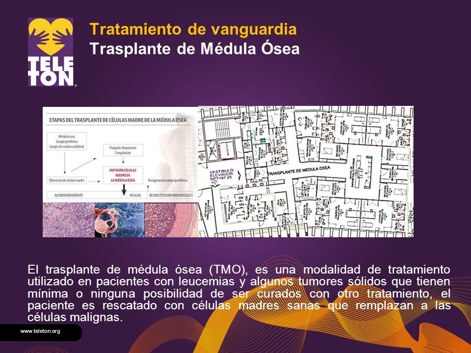 www.teleton.org Tratamiento de vanguardia Trasplante de Médula Ósea El trasplante de médula ósea (TMO), es una modalidad de tratamiento utilizado en p