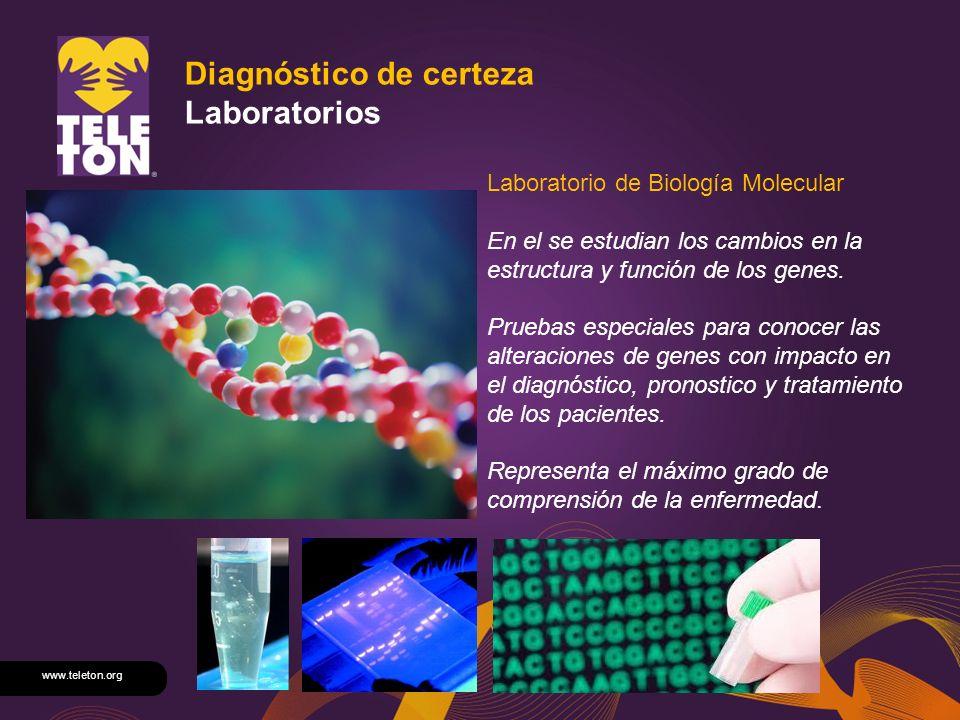 www.teleton.org Diagnóstico de certeza Laboratorios Laboratorio de Biología Molecular En el se estudian los cambios en la estructura y función de los