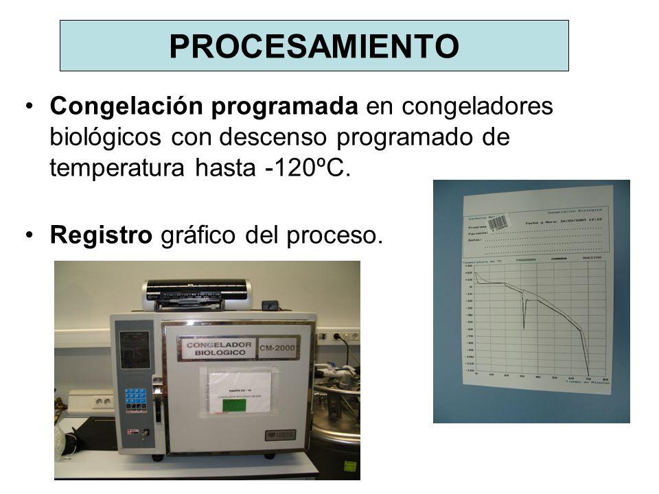 PROCESAMIENTO Congelación programada en congeladores biológicos con descenso programado de temperatura hasta -120ºC. Registro gráfico del proceso.