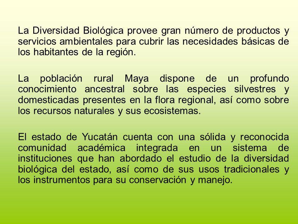 La Diversidad Biológica provee gran número de productos y servicios ambientales para cubrir las necesidades básicas de los habitantes de la región. La