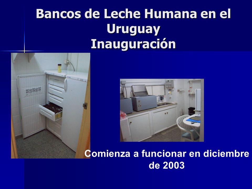 Bancos de Leche Humana en el Uruguay El 8 de abril de 2005 el Gobierno Nacional, en el Día Internacional de la Salud, dispone en un acto público, que el Banco de Leche Humana del Servicio de Recién Nacidos del Centro Hospitalario Pereira Rossell sea un programa prioritario.