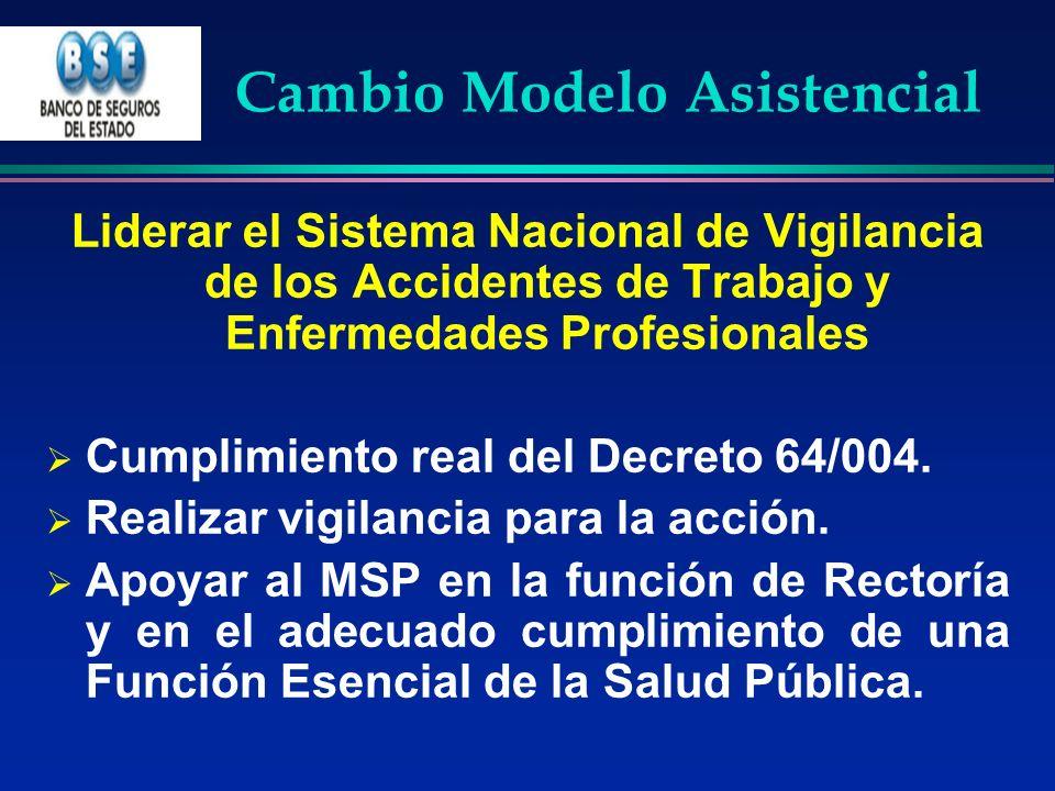 Cambio Modelo Asistencial Liderar el Sistema Nacional de Vigilancia de los Accidentes de Trabajo y Enfermedades Profesionales Cumplimiento real del De