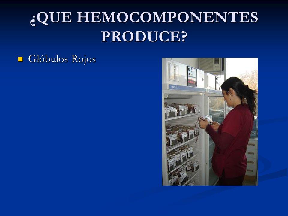 ¿QUE HEMOCOMPONENTES PRODUCE? Glóbulos Rojos Glóbulos Rojos