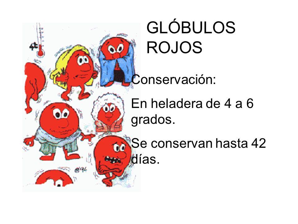 Conservación: En heladera de 4 a 6 grados. Se conservan hasta 42 días. GLÓBULOS ROJOS