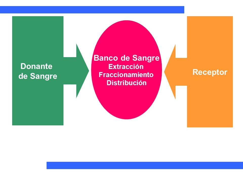 Donante de Sangre Receptor Banco de Sangre Extracción Fraccionamiento Distribución