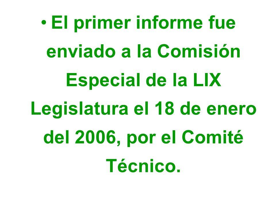 El primer informe fue enviado a la Comisión Especial de la LIX Legislatura el 18 de enero del 2006, por el Comité Técnico.
