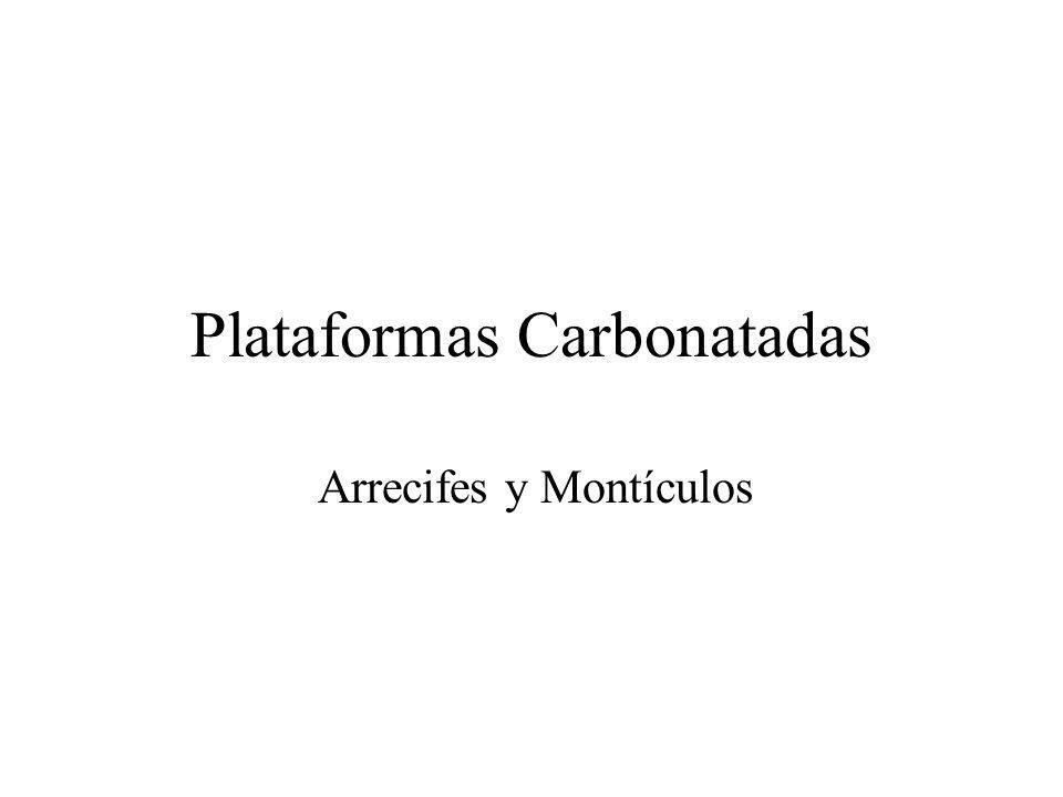 Plataformas Carbonatadas Arrecifes y Montículos