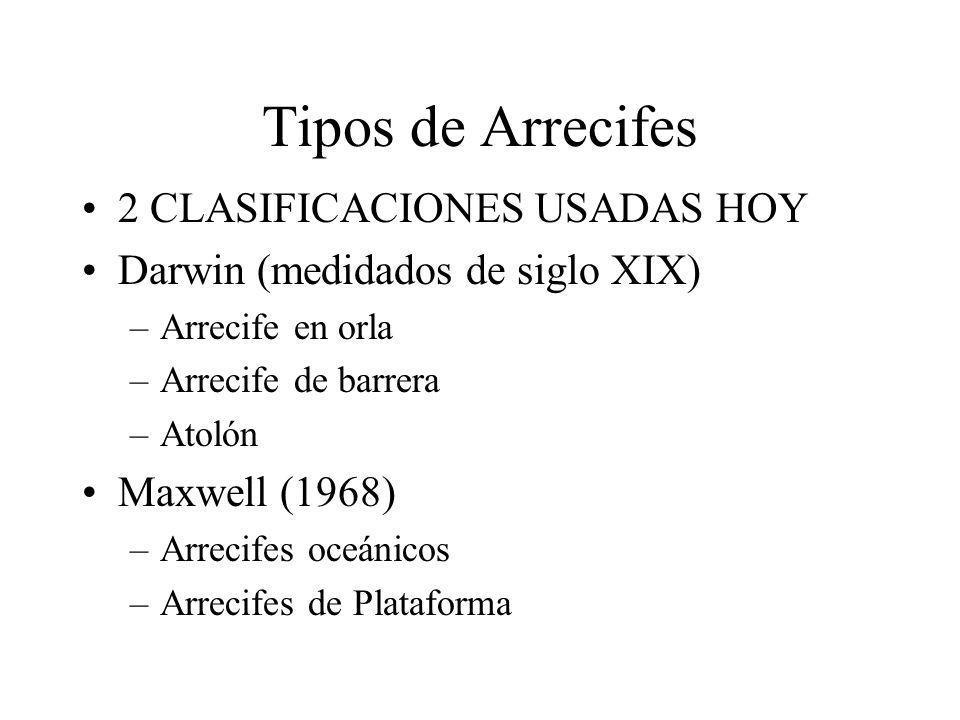 Tipos de Arrecifes 2 CLASIFICACIONES USADAS HOY Darwin (medidados de siglo XIX) –Arrecife en orla –Arrecife de barrera –Atolón Maxwell (1968) –Arrecif