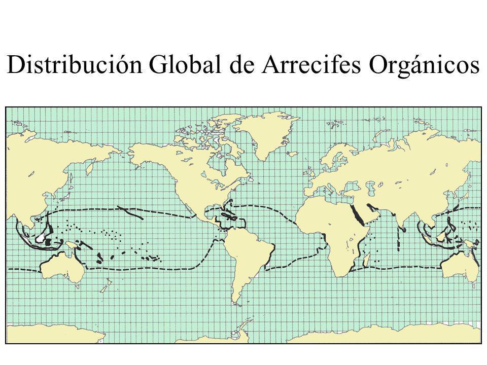 Distribución Global de Arrecifes Orgánicos