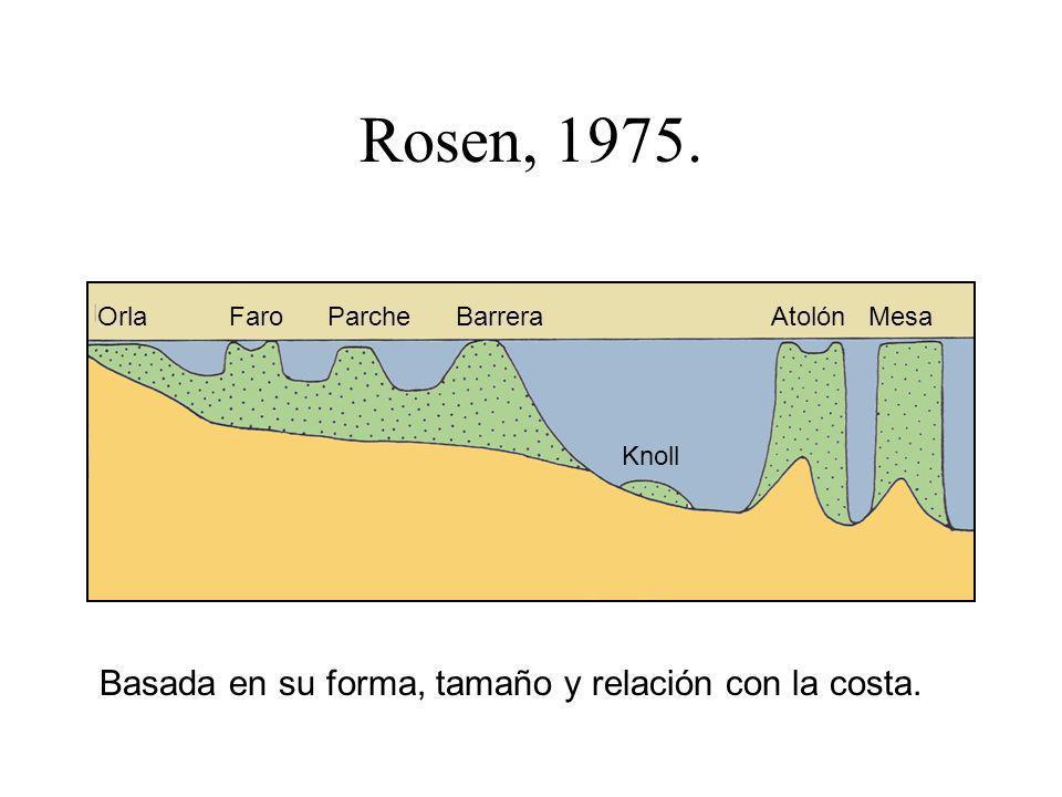 Rosen, 1975. Basada en su forma, tamaño y relación con la costa. Orla Faro Parche Barrera Atolón Mesa Knoll