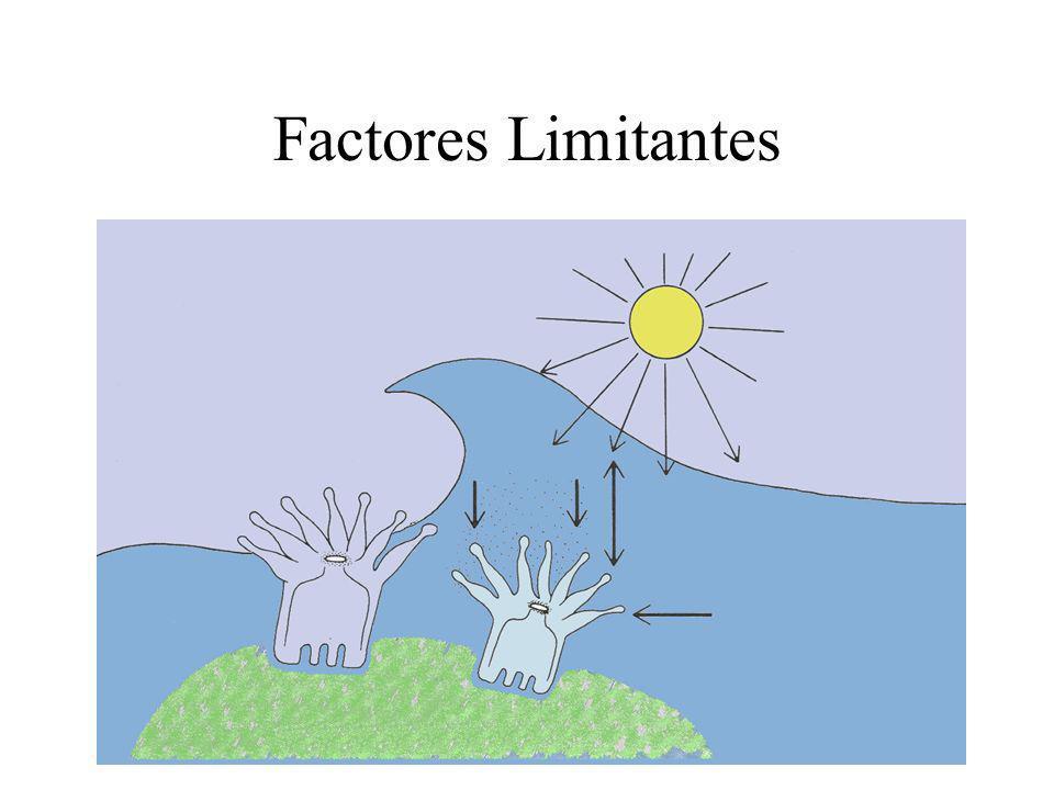 Factores Limitantes