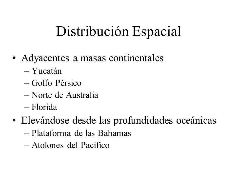 Distribución Espacial Adyacentes a masas continentales –Yucatán –Golfo Pérsico –Norte de Australia –Florida Elevándose desde las profundidades oceánicas –Plataforma de las Bahamas –Atolones del Pacífico