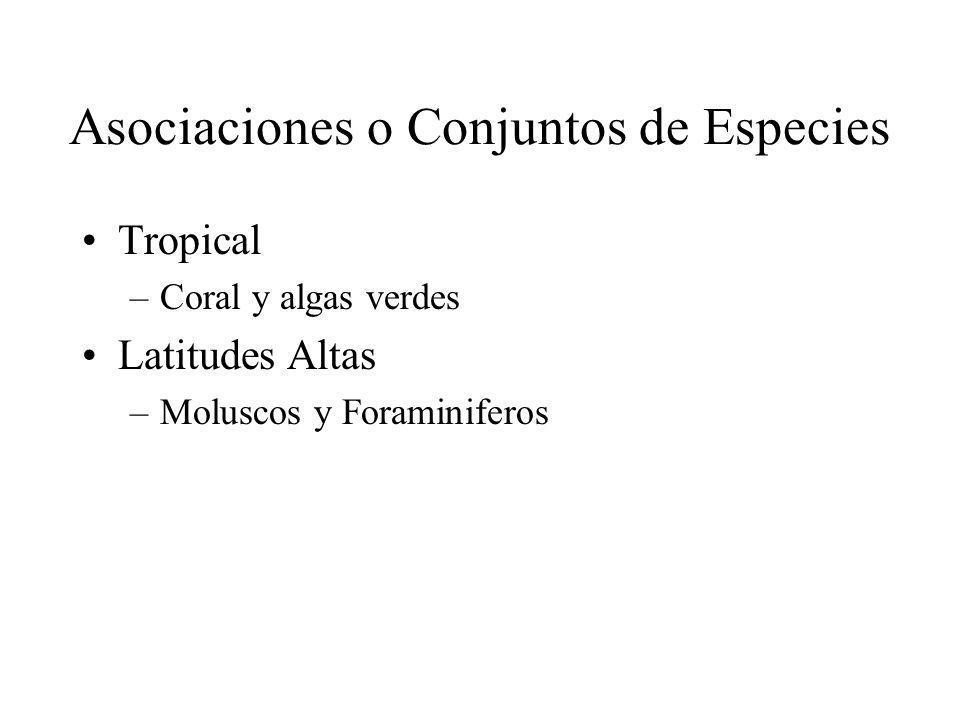 Asociaciones o Conjuntos de Especies Tropical –Coral y algas verdes Latitudes Altas –Moluscos y Foraminiferos
