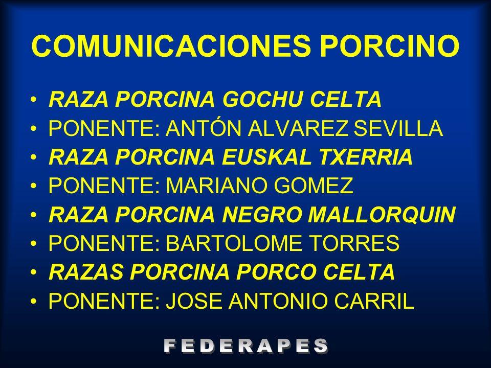 COMUNICACIONES PORCINO RAZA PORCINA GOCHU CELTA PONENTE: ANTÓN ALVAREZ SEVILLA RAZA PORCINA EUSKAL TXERRIA PONENTE: MARIANO GOMEZ RAZA PORCINA NEGRO M