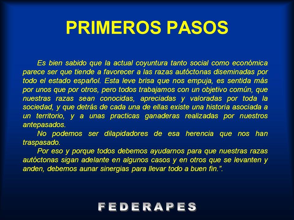 **Dr.Miguel Fernández. SERGA RAZAS DE GALLINAS ESPAÑOLAS: REPRODUCTORAS II Encuentro de r.
