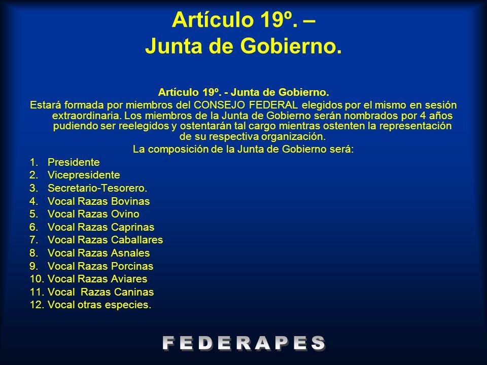 Artículo 19º. – Junta de Gobierno. Artículo 19º. - Junta de Gobierno. Estará formada por miembros del CONSEJO FEDERAL elegidos por el mismo en sesión