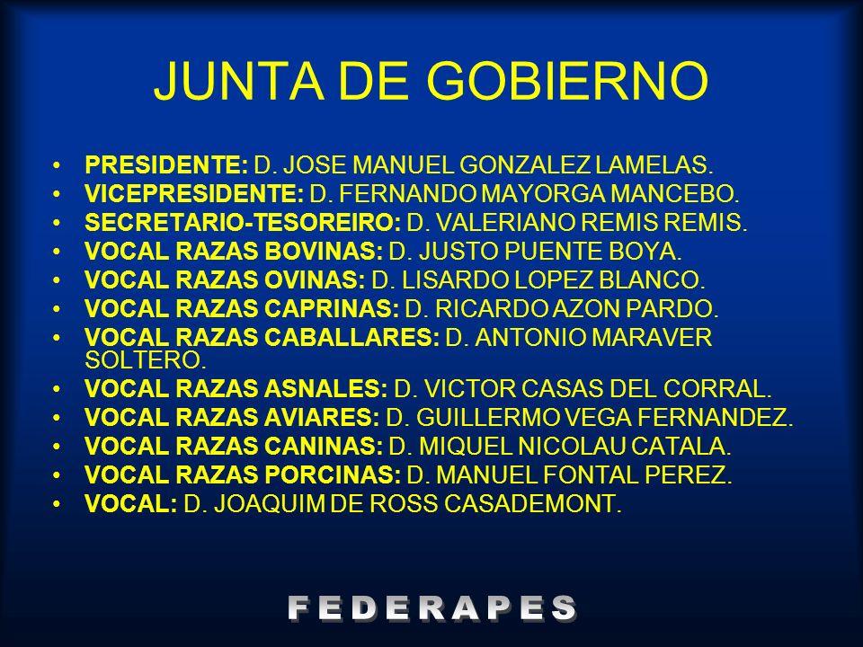 JUNTA DE GOBIERNO PRESIDENTE: D. JOSE MANUEL GONZALEZ LAMELAS. VICEPRESIDENTE: D. FERNANDO MAYORGA MANCEBO. SECRETARIO-TESOREIRO: D. VALERIANO REMIS R