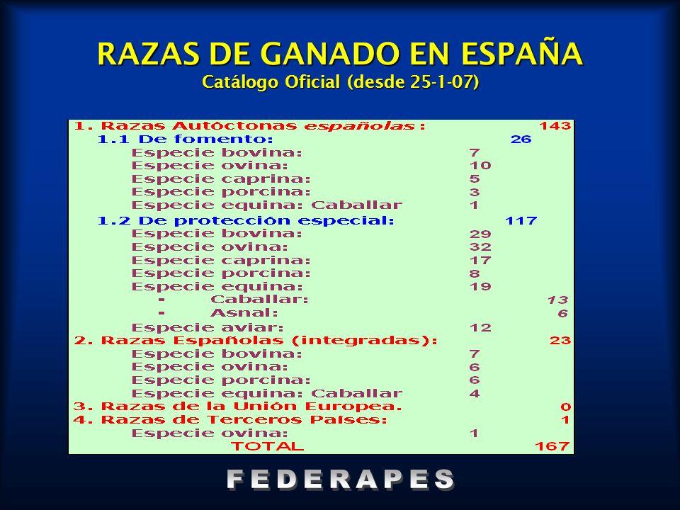 RAZAS DE GANADO EN ESPAÑA Catálogo Oficial (desde 25-1-07)