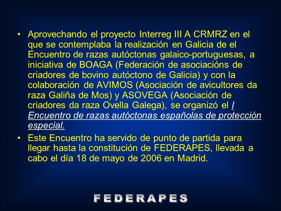 SOCIOS ASOCIACION ANDALUZA DE GANADO EQUINO MARISMEÑO CABALLAR ASOCIACIÓN DE CRIADORES DE CABALLOS LOSINOS El Bardojal CABALLAR ASOCIACIÓN DE CRIADORES DE PONIS DE RAZA ASTURCÓN CABALLAR ASOCIACIÓN PURA RAZA CABALO GALEGO CABALLAR ASOCIACIÓ DE CAÇADORS I CRIADORS DEL CA MÉ MALLORQUÍ CANINA CLUB DE RAZA CAN DE PALLEIRO CANINA ASOCIACIÓN DE CRIADORES DE CAPRINO RETINTO EXTREMEÑO CAPRINA ASOCIACIÓN ARAGONESA DE CRIADORES DE CAPRINO DE RAZA PIRENAICA CAPRINA ASOCIACIÓN DE CRIADORES DE CAPRINO DE RAZA MONCAÍNA CAPRINA ASOCIACIÓN EXTREMEÑA DE RIADORES DE GANADO CAPRINO DE RAZA VERATA CAPRINA ASOCIACIÓN DE CRIADORES DE OVINO ANSOTANO OVINA ASOCIACION NACIONAL DE CRIADORES DE RAZA OJALADA OVINA ASOCIACIÓN DE GANADEROS DE RAZA CARTERA OVINA ASOCIACIÓN DE CRIADORES DA RAZA OVELLA GALEGA OVINA ASOCIACIÓN DE CRIADORES D´OVELLA XALDA OVINA ASOCIACIÓN DE CRIADORES DE GANADO OVINO DE RAZA CHURRA TENSINA OVINA ASOCIACIÓN DE CRIADORES DE GANADO OVINO DE RAZA ROYA BILBILITANA OVINA ASOCIACIÓN DE CRIADORES DE GANADO OVINO DE RAZA SELECTA CASTELLANA NEGRA OVINA ASOCIACIÓN DE CRIADORS DE OVINS DE RAZA RIPOLLESA OVINA ASOCIACIÓN DE GANADEROS DE OVINO DE RAZA MAELLANA OVINA ASOCIACIÓN DE GANADEROS DE RAZA OVINA ALCARREÑA OVINA ASOCIACIÓN DE CRIADORES DA RAZA PORCINA CELTA-ASOPORCEL PORCINA