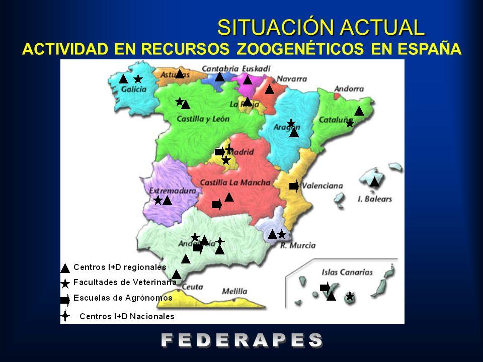 ACTIVIDAD EN RECURSOS ZOOGENÉTICOS EN ESPAÑA SITUACIÓN ACTUAL