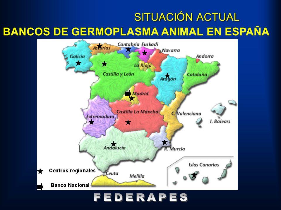 BANCOS DE GERMOPLASMA ANIMAL EN ESPAÑA SITUACIÓN ACTUAL
