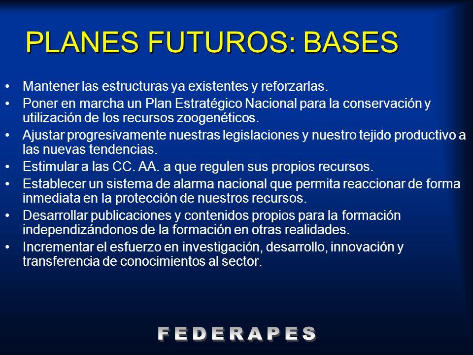 PLANES FUTUROS: BASES Mantener las estructuras ya existentes y reforzarlas. Poner en marcha un Plan Estratégico Nacional para la conservación y utiliz
