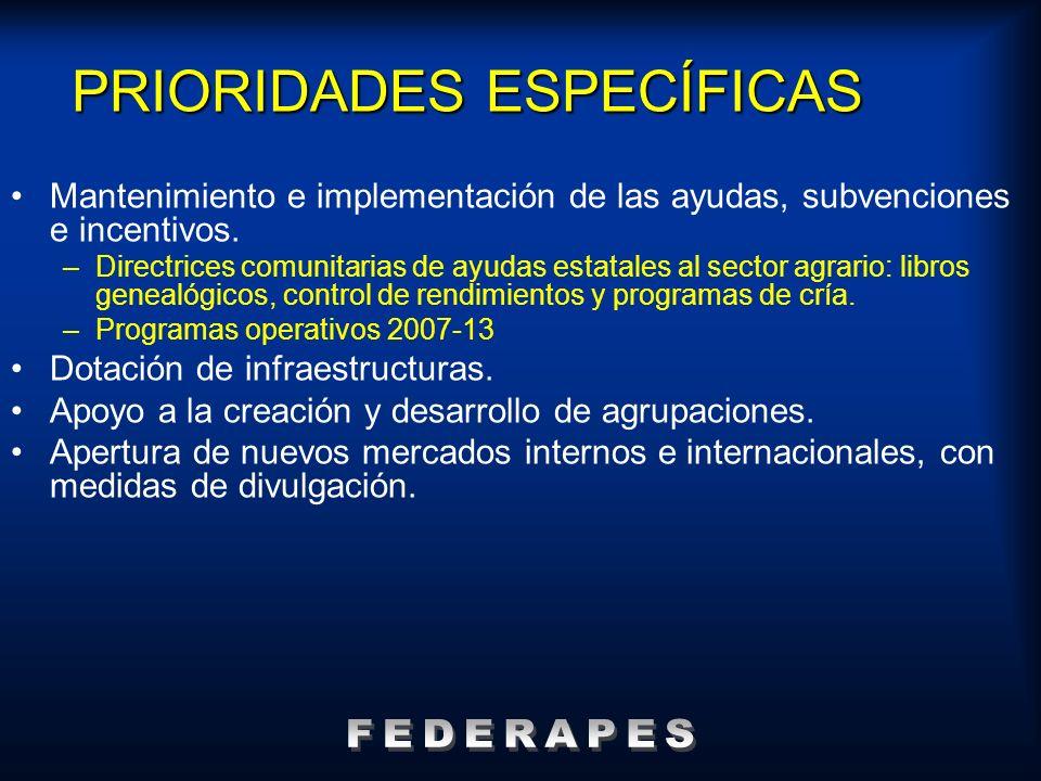 PRIORIDADES ESPECÍFICAS Mantenimiento e implementación de las ayudas, subvenciones e incentivos. –Directrices comunitarias de ayudas estatales al sect