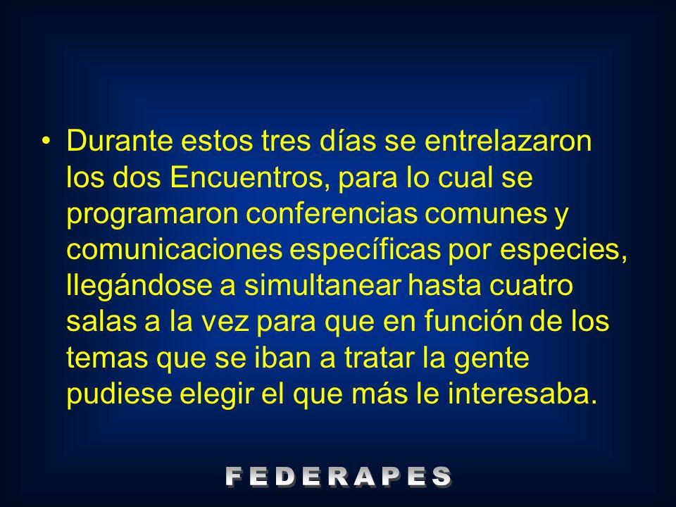 Tras la mesa redonda sobre razas autóctonas españolas de protección especial celebrada el sábado 3, se llegó a la conclusión de crear FEDERAPES, con el objetivo de aunar esfuerzos.